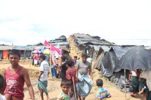 rohingia